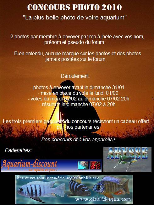 Affiche du concours photo n°1 Affich10