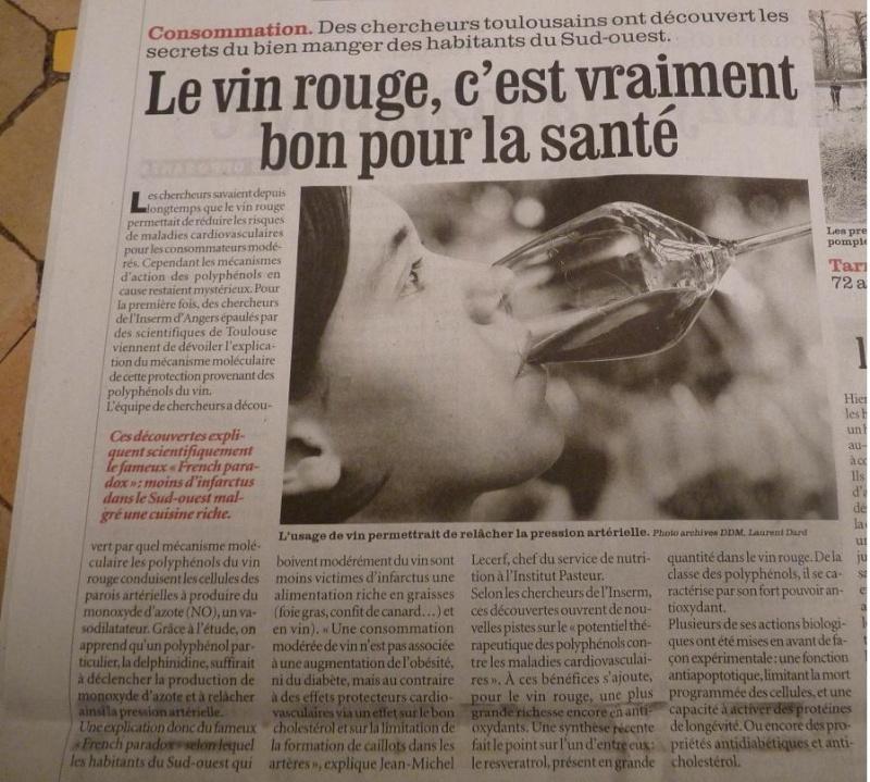 LA VEGETATION MEDITERRANEENNE - Page 2 P1050121