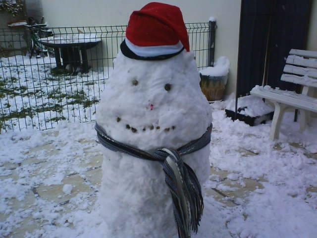 Le plus beau bonhomme de neige 27290510