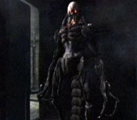 Resident Evil 4 (Gamecube) Verdug10