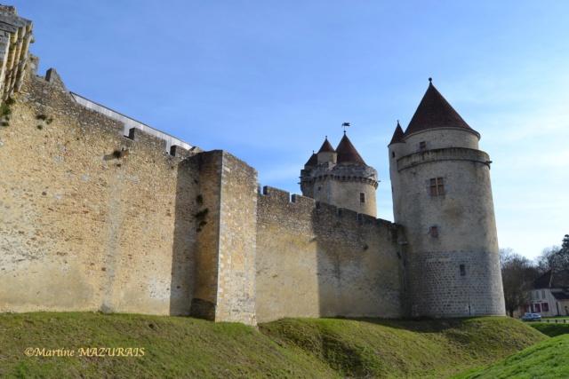 Blandy les Tours – Le château 04-02-10