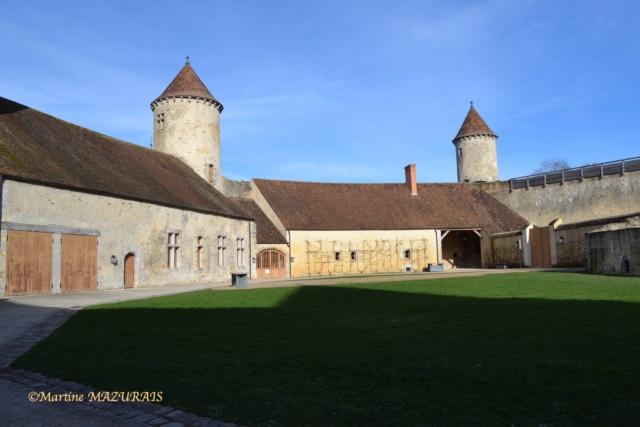 Blandy les Tours – Le château 04-02-14
