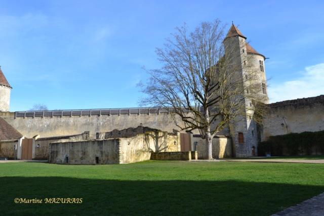 Blandy les Tours – Le château 04-02-15