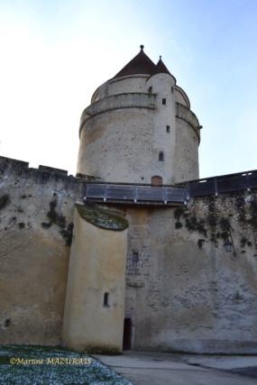Blandy les Tours – Le château 04-02-16