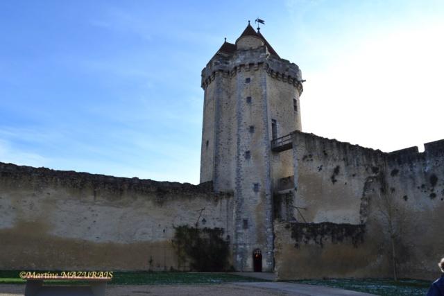Blandy les Tours – Le château 04-02-17