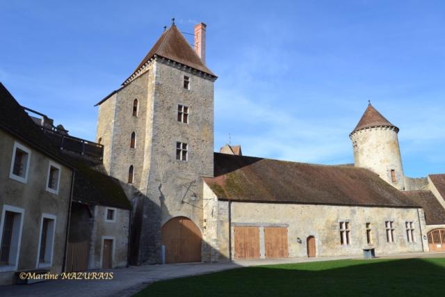 Blandy les Tours – Le château 04-02-18