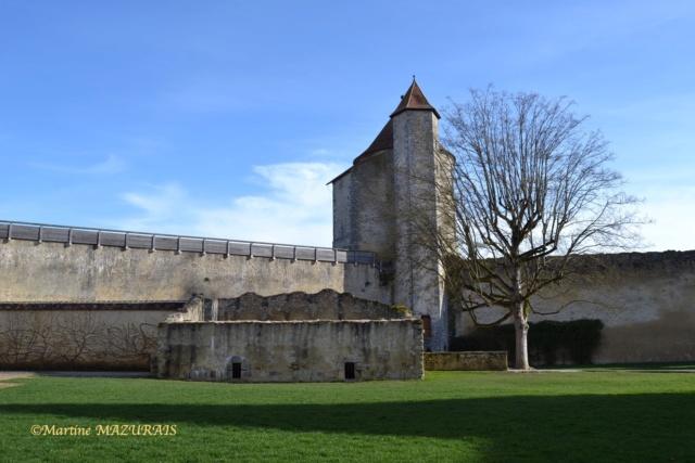 Blandy les Tours – Le château 04-02-19