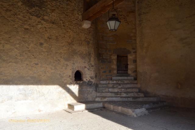Blandy les Tours – Le château 04-02-20