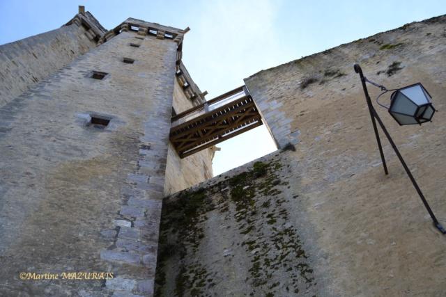 Blandy les Tours – Le château 04-02-21