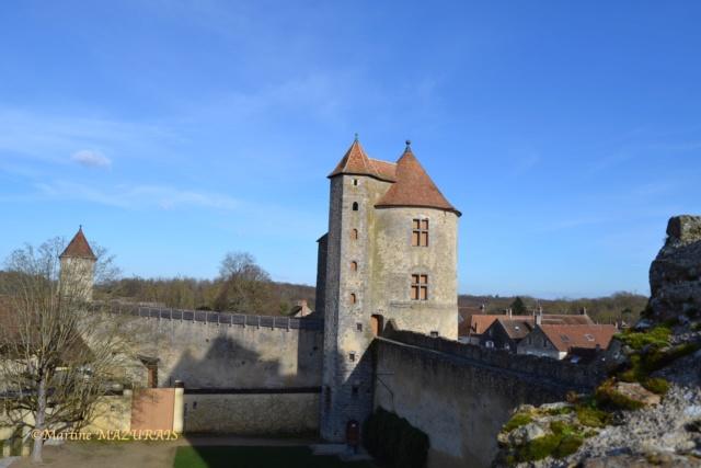 Blandy les Tours – Le château 04-02-22