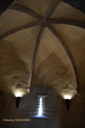 Blandy les Tours – Le château 04-02-24