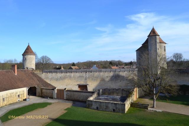 Blandy les Tours – Le château 04-02-25