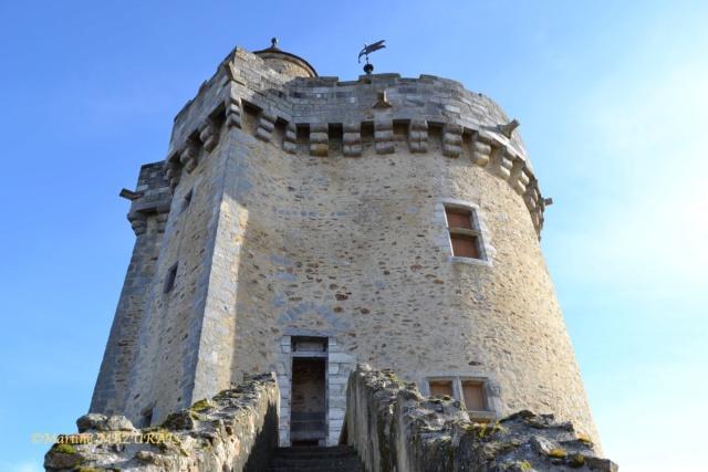 Blandy les Tours – Le château 04-02-27