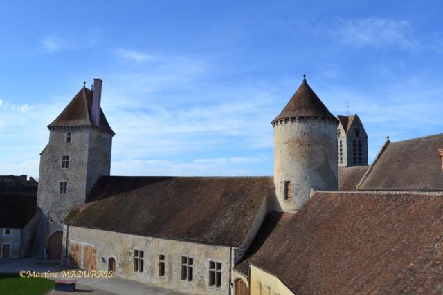 Blandy les Tours – Le château 04-02-31