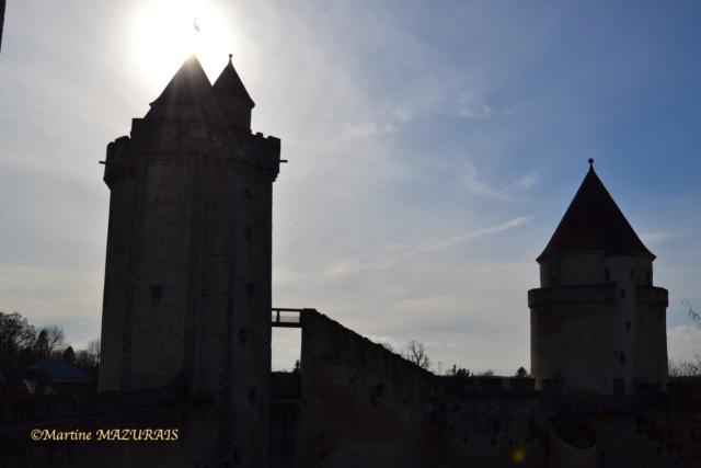 Blandy les Tours – Le château 04-02-32