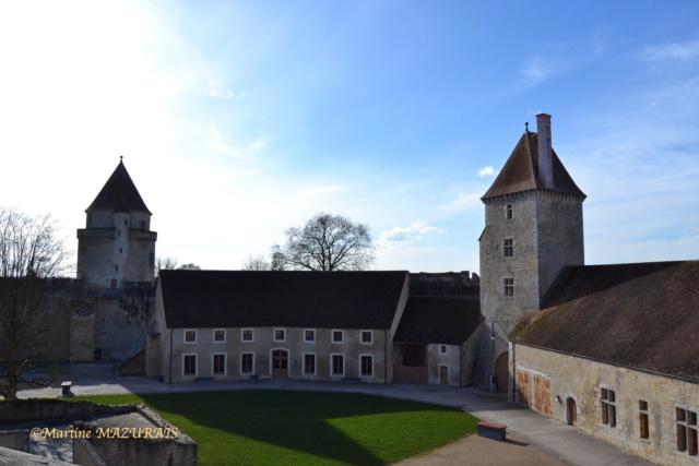Blandy les Tours – Le château 04-02-33