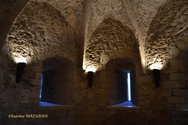 Blandy les Tours – Le château 04-02-35