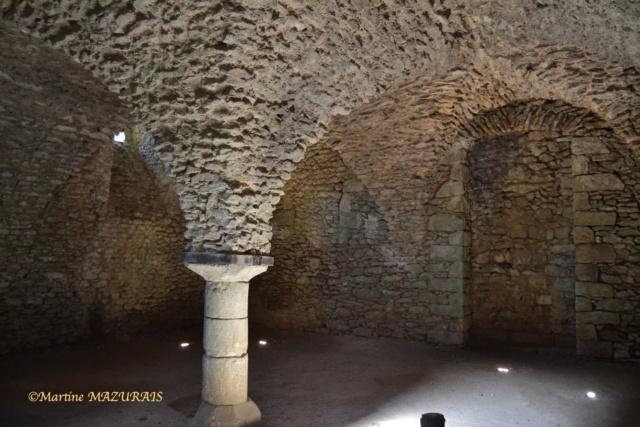 Blandy les Tours – Le château 04-02-37
