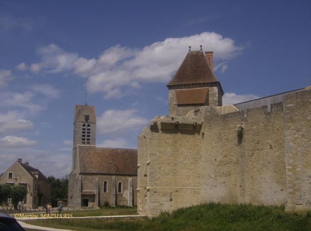 Blandy les Tours – Le château Juille13