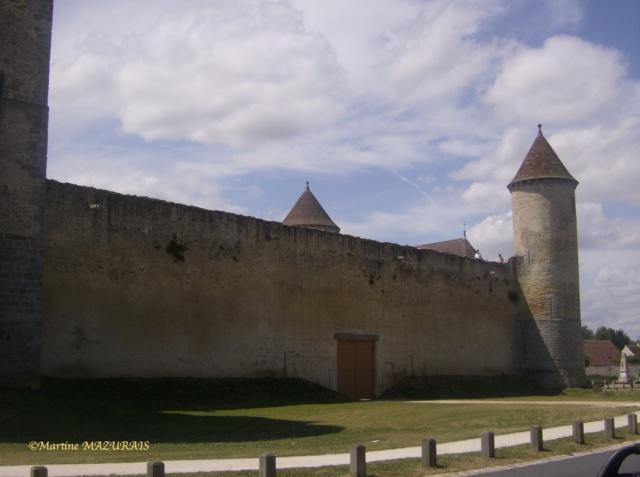 Blandy les Tours – Le château Juille15