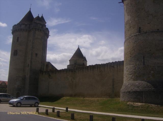 Blandy les Tours – Le château Juille17