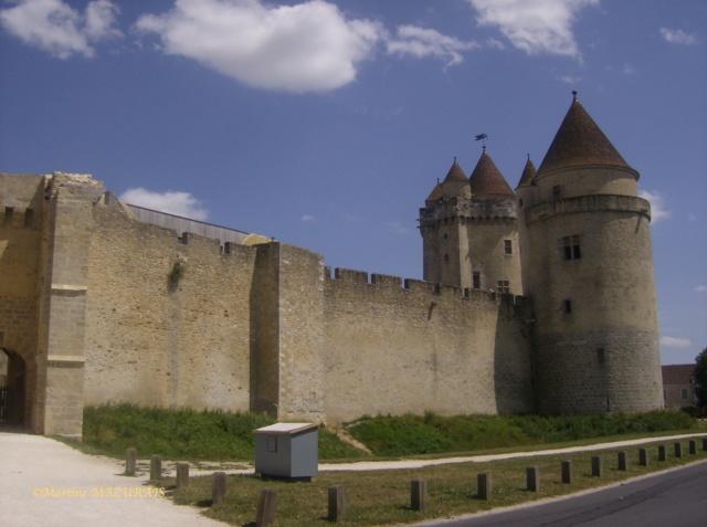 Blandy les Tours – Le château Juille18