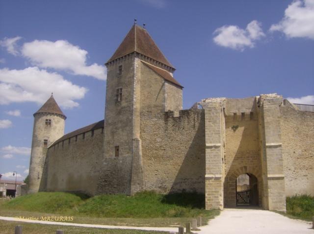 Blandy les Tours – Le château Juille19