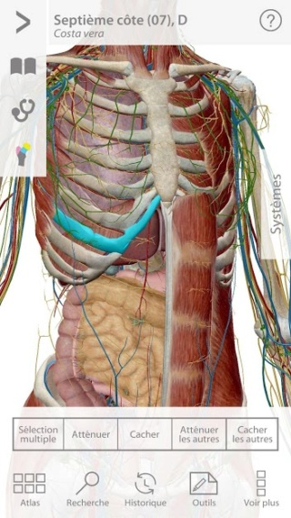 [anatomie-app]: application Atlas d'anatomie humaine 2021 APK full complet gratuit - Page 4 Unname11