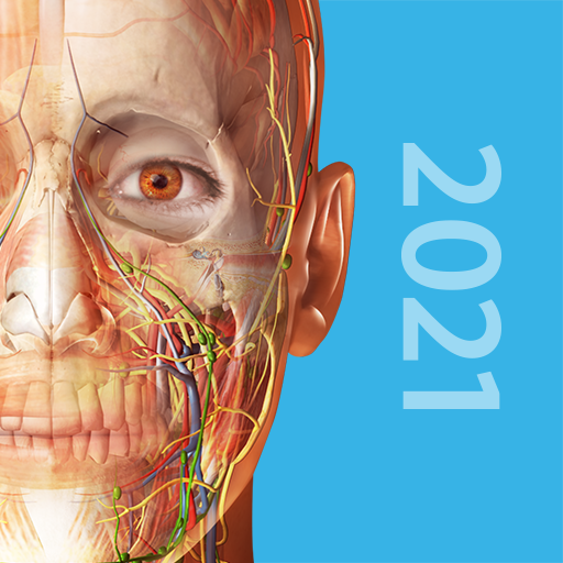 [anatomie-app]:Atlas d'anatomie humaine 2021 dernière version full APK complet et gratuit  - Page 2 Unname12
