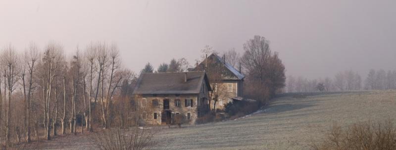 l'hiver... sans neige 20100111