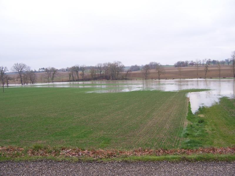 il pleut 2013 100_6710