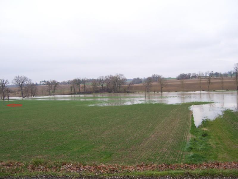 il pleut 2013 100_6711