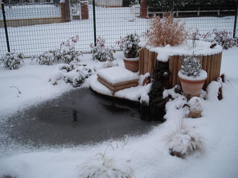sous la glace et neige la semaine dernière Dscf0510