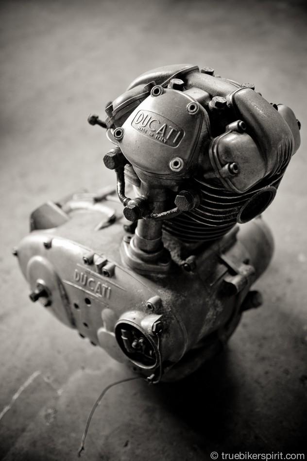 Ici on balance les Monos Ducati - Page 5 Tumbl153