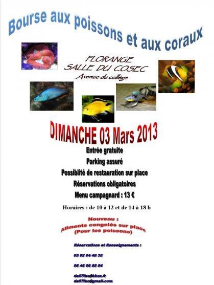 Bourse de Florange - 03 mars 2013 Flor10