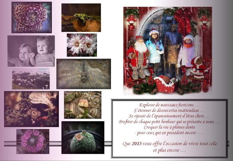 A Toutes et à Tous, pour 2013 ...  Voeux_10