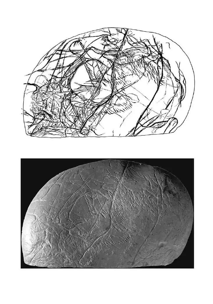 Galets et os gravés magdaléniens de la grotte de la Colombière (Neuville sur Ain / Poncin) 22-59310