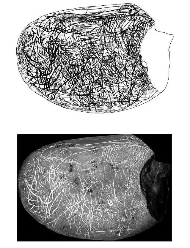 Galets et os gravés magdaléniens de la grotte de la Colombière (Neuville sur Ain / Poncin) 45-5fb10