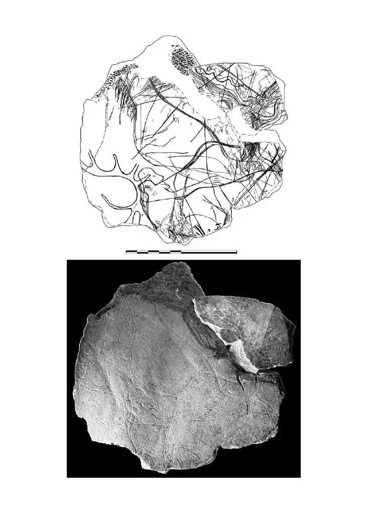 Galets et os gravés magdaléniens de la grotte de la Colombière (Neuville sur Ain / Poncin) 51-cf110