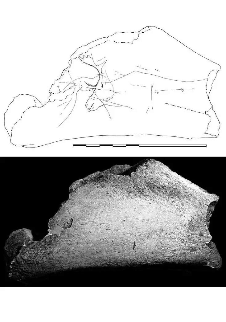 Galets et os gravés magdaléniens de la grotte de la Colombière (Neuville sur Ain / Poncin) 54-ba110