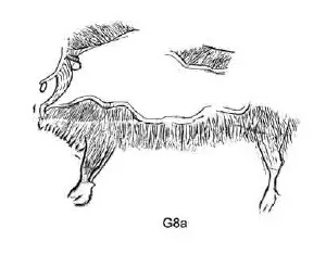 Galets et os gravés magdaléniens de la grotte de la Colombière (Neuville sur Ain / Poncin) 65-dd311