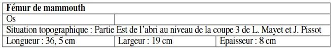 Galets et os gravés magdaléniens de la grotte de la Colombière (Neuville sur Ain / Poncin) Captur44