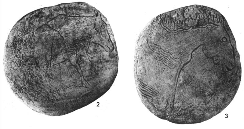 Galets et os gravés magdaléniens de la grotte de la Colombière (Neuville sur Ain / Poncin) Galets12