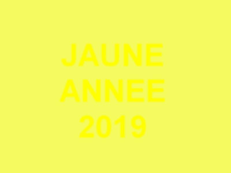 Voeux 2019: Gilets Jaunes / Jaune Année Jaune_10