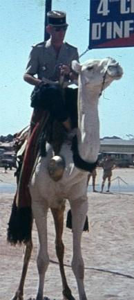 La charge de la cavalerie légère Antoni10