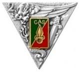 2ème Régiment Etranger de Parachutistes Insign11
