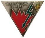 2ème Régiment Etranger de Parachutistes Insign17