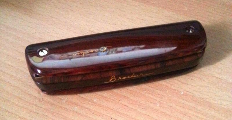 Photos harmonicas Brodur - Page 6 20130119