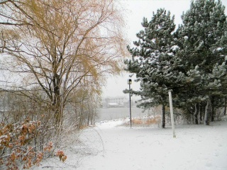 Mes photos de neige Neige910