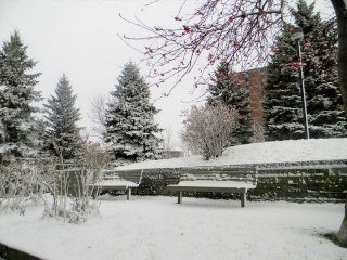 Mes photos de neige Neige_10